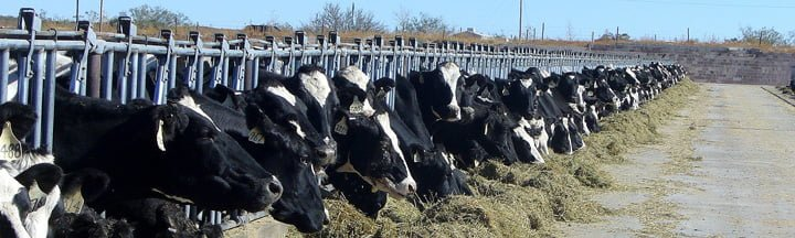 Dairy Inspection Information New Mexico Department Of Agriculture