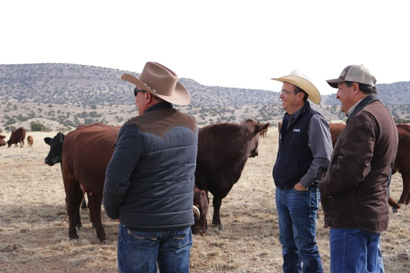 Three men near cattle on rangeland. They all smiles as they look at the cows.