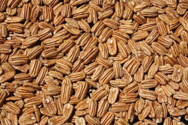 The pecan is a popular agriculture product in New Mexico. Pecan production in New Mexico is forecast at a record high 97 million pounds for 2019, which is the highest in the nation.