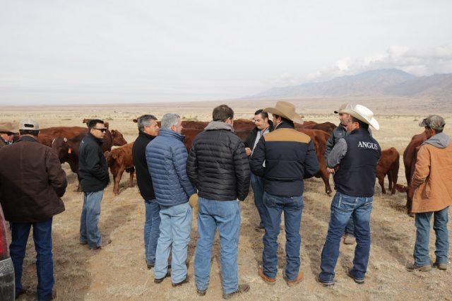 Varios compradores de ganado de México asistieron a la Convención de Ganaderos de 2018 en Albuquerque. El personal del Departamento de Agricultura de Nuevo México facilitó una reunión internacional.