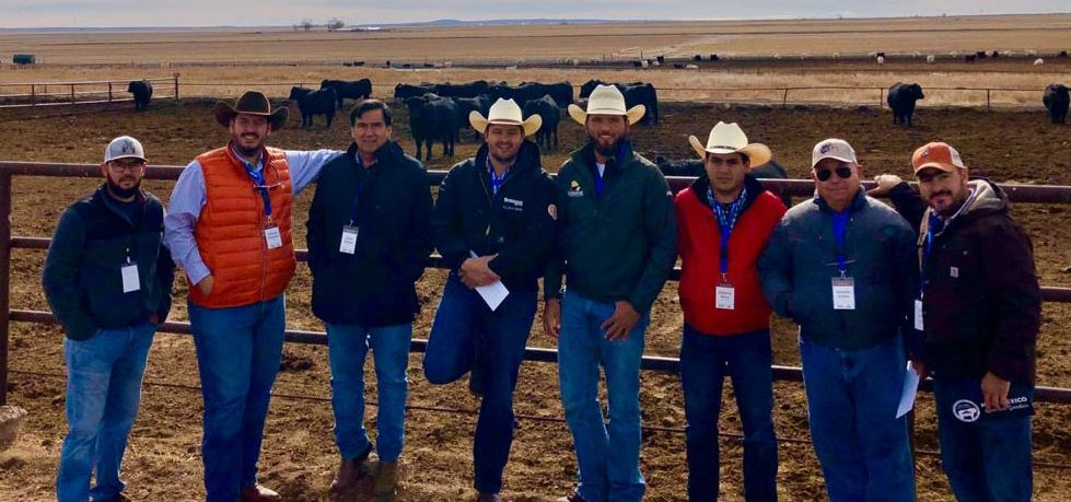 The NMDA marketing team hosted cattle buyers from Mexico in December 2019. They visited New Mexico ranches and met with cattle producers at the Joint Stockmen's Convention, hosted by the New Mexico Cattle Growers Association in Albuquerque. NMDA Marketing Specialist Juan Sanchez works with U.S. Livestock Genetic Export, Inc. to conduct trade activities on behalf of New Mexico livestock producers.