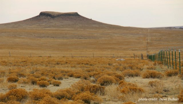 A barren New Mexican mesa stands tall amidst the dry rangeland.