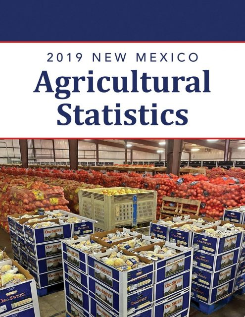 The 2019 New Mexico Agricultural Statistics cover features pallets and boxes of colorful packaged produce in a large warehouse.