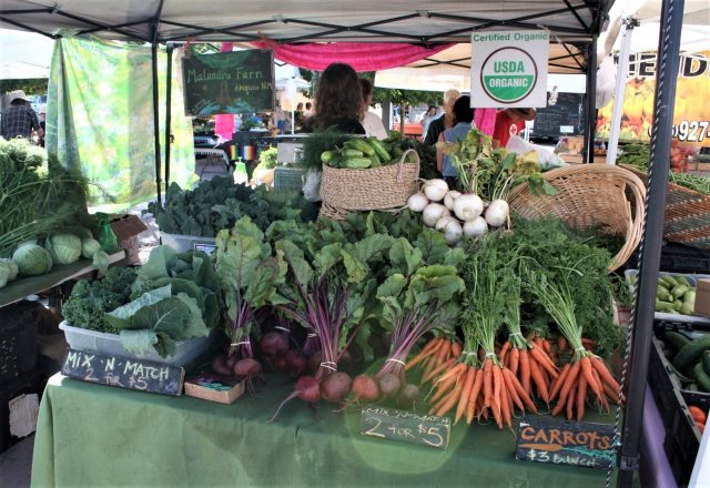 Organic vegetables on display at the farmer's market